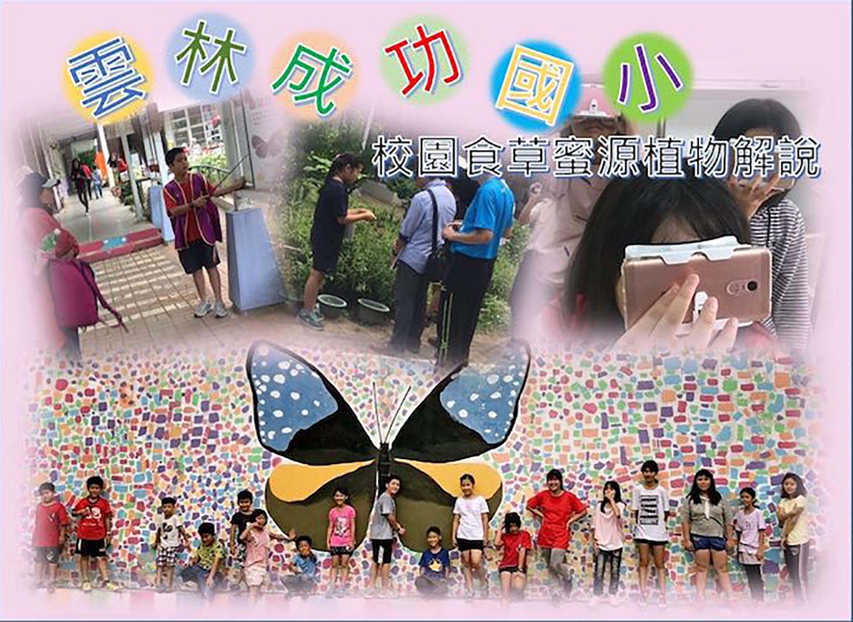 紫蝶生態校園食草蜜源植物解說-雲林縣成功國小