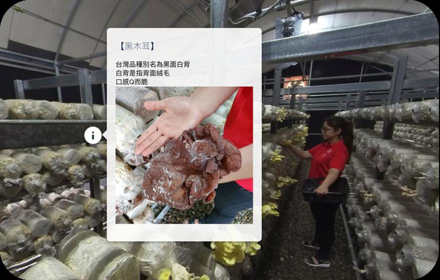 菇農行銷VR內容製作